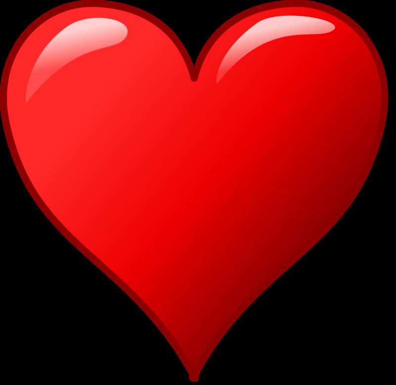 Nos coups de cœur