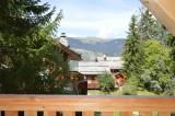 La Tania Location Chalet Luxe Counite Vue Montagne