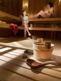 Le Grand Bornand Location Appartement Luxe Leukorite Duplex Sauna