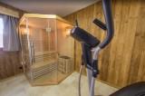 Les Menuires Luxury Rental Chalet Lalinaire Sauna