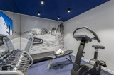 Megève Luxury Rental Chalet Cajuelite Fitness Room