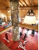Peisey Vallandry  Location Appartement Luxe Magnolia Salle De Fitness