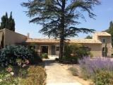 Saint Rémy De Provence Location Villa Luxe Maholita Exterieur
