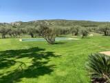 Saint Rémy De Provence Location Villa Luxe Molodavite Jardin