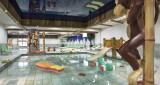 Tignes Rental Apartment Luxury Micaty Swimming Pool