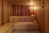 Valmorel Location Appartement Luxe Ferrucite Duplex Sauna