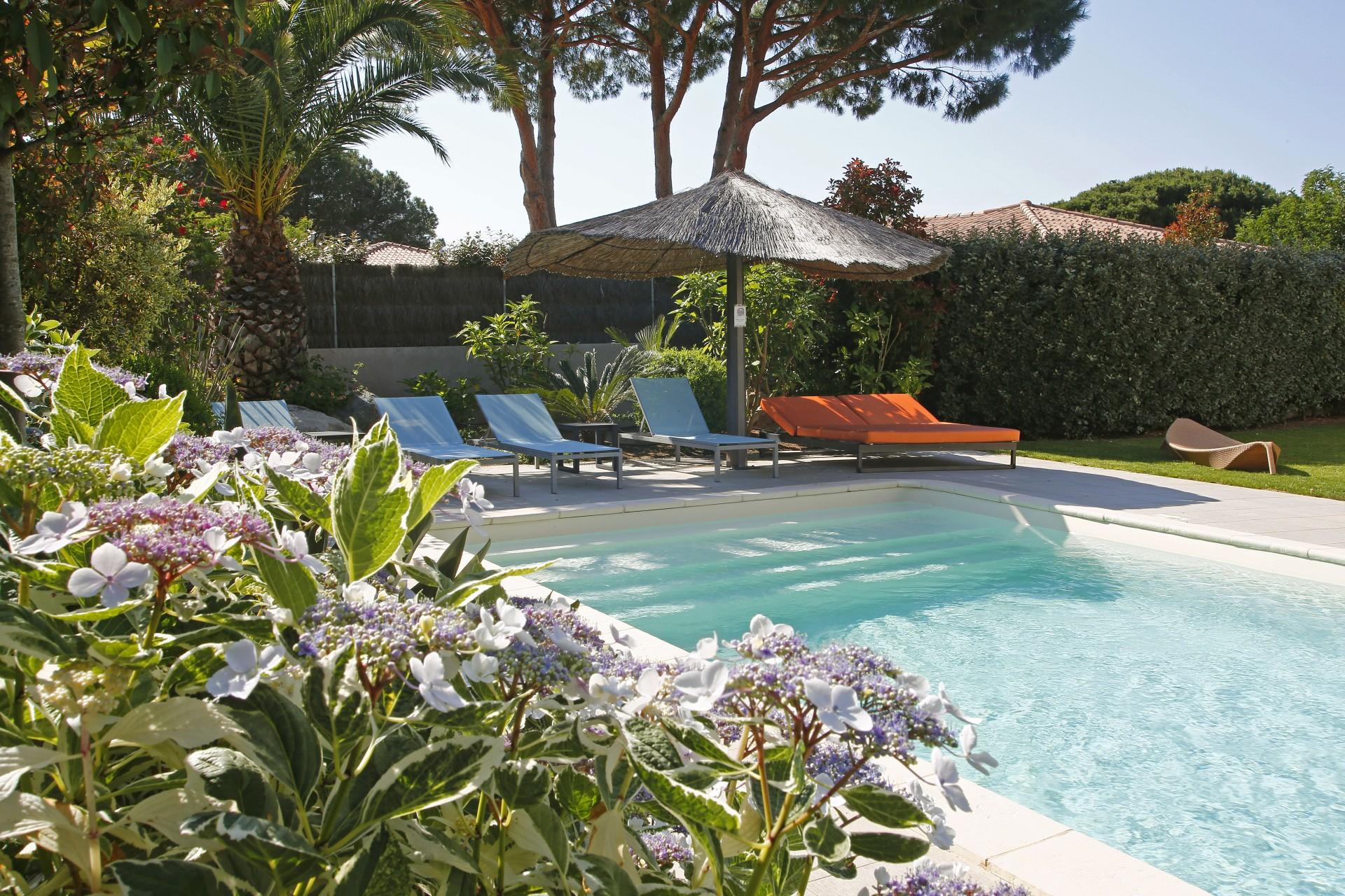 Calvi Location Villa Luxe Crisson Piscine