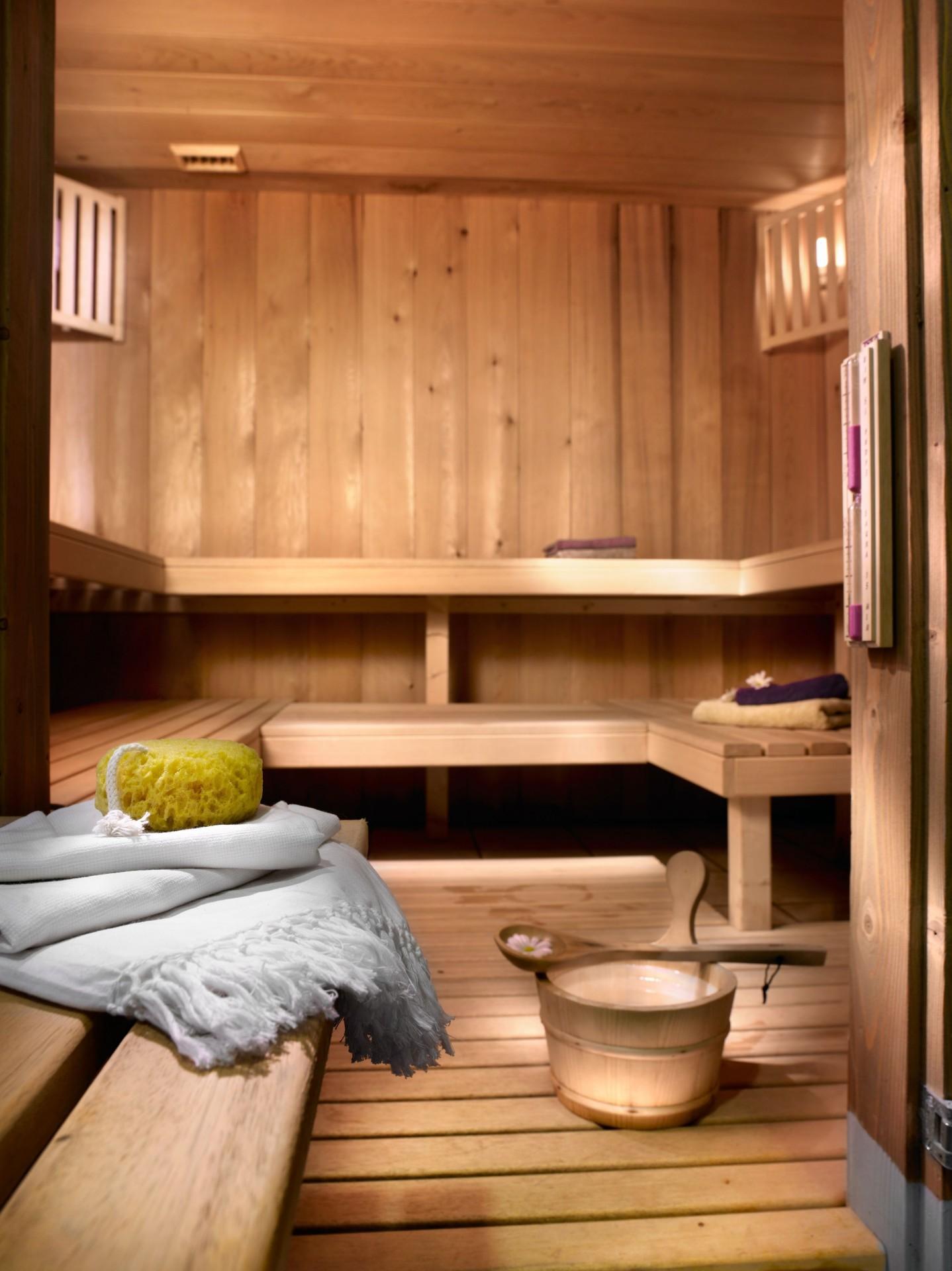Champagny En Vanoise Location Appartement Luxe Chapminice Sauna