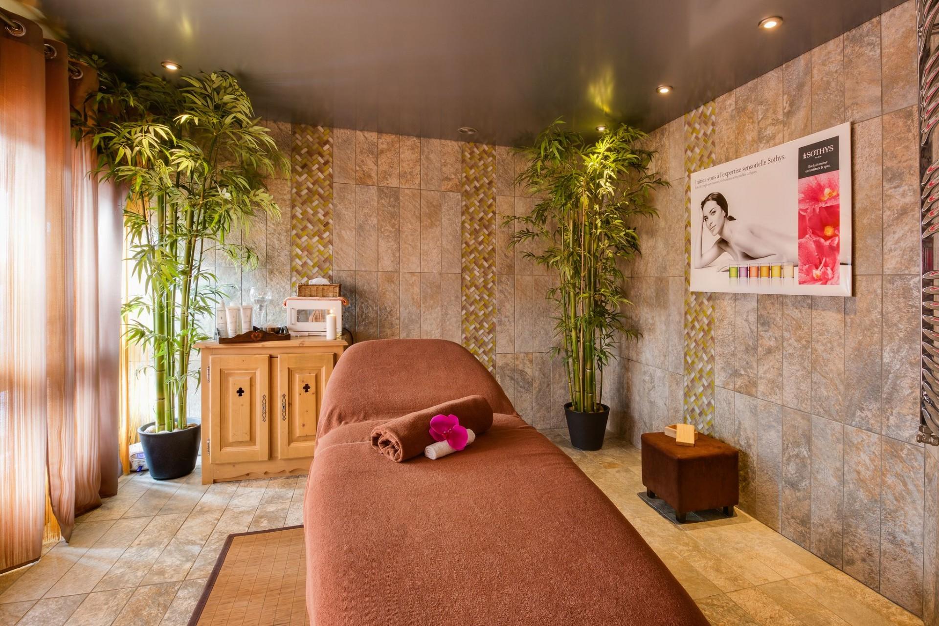 La Rosière Location Appartement Luxe Lynx Cyanite Massage