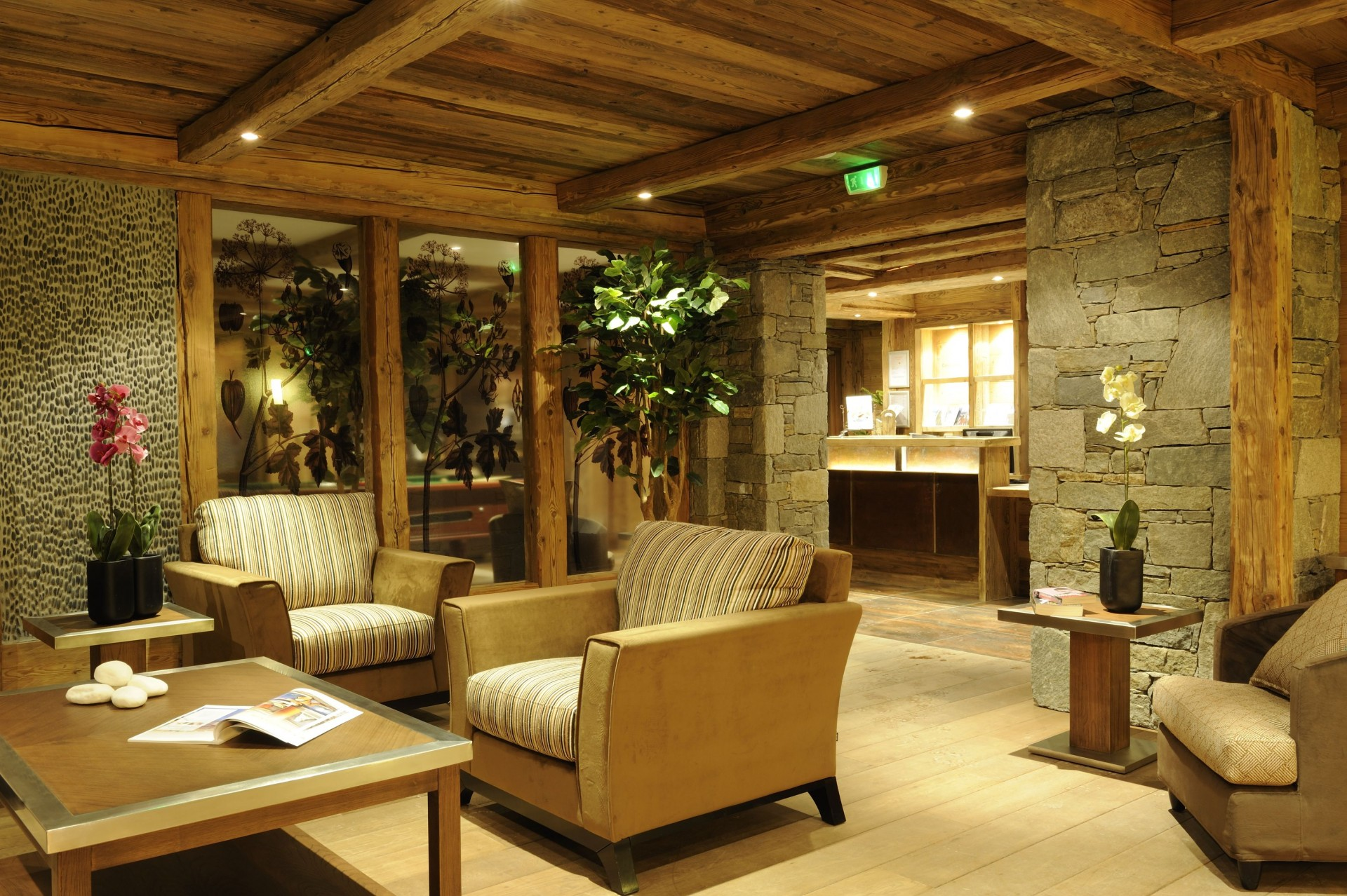 Peisey Vallandry  Location Appartement Luxe Pagodite Réception 1