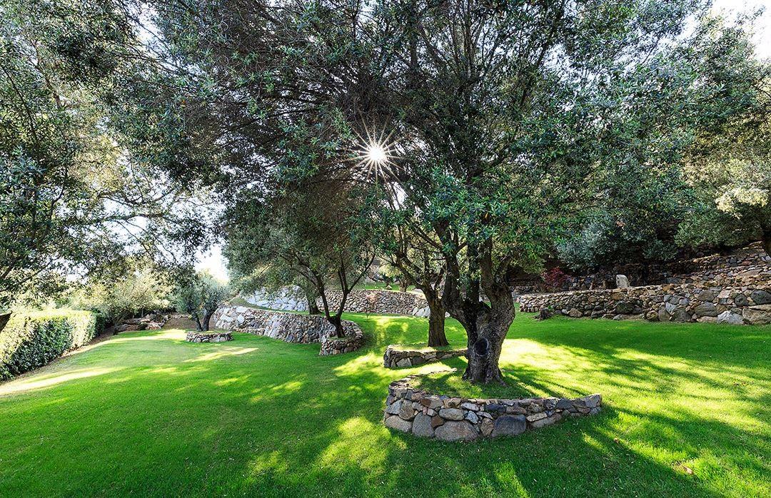 Propriano Location Villa Luxe Quilary Jardin