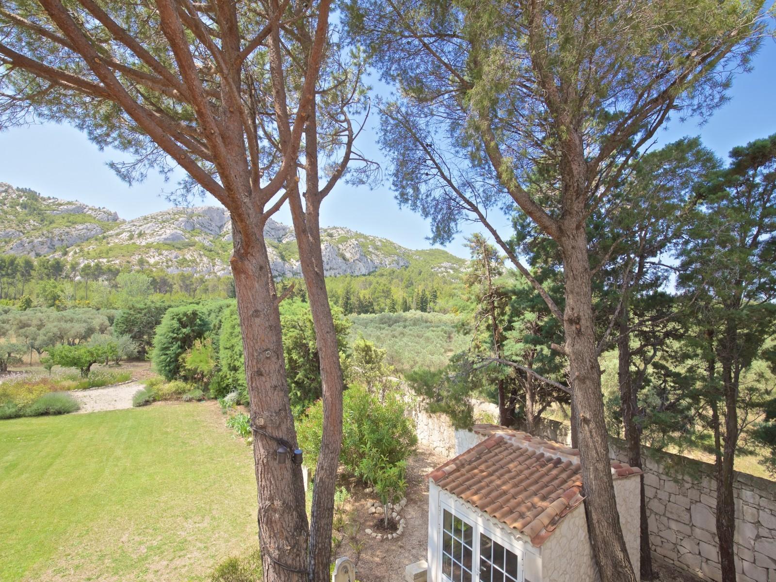 Saint Rémy De Provence Luxury Rental Villa Molduvite Garden