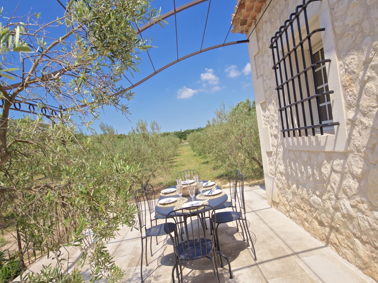Saint Rémy De Provence Luxury Rental Villa Molduvite Terrace