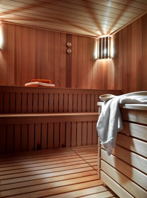 Samoens Location Appartement Luxe Salis Duplex Sauna