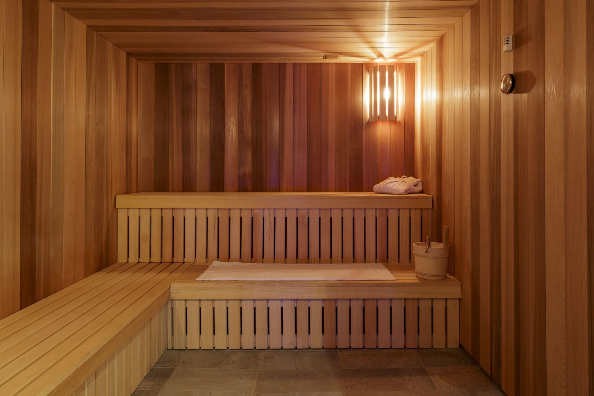 Valmorel Location Appartement Luxe Ferune Sauna