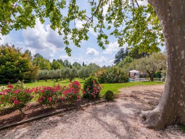 Saint Rémy De Provence Location Villa Luxe Micavite Jardin