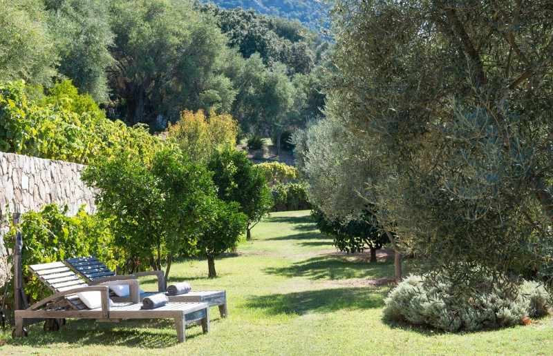 Calvi Luxury Rental Villa Diademe Royal Garden