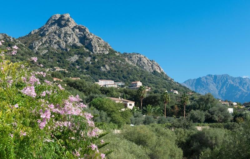 Calvi Luxury Rental Villa Doste View