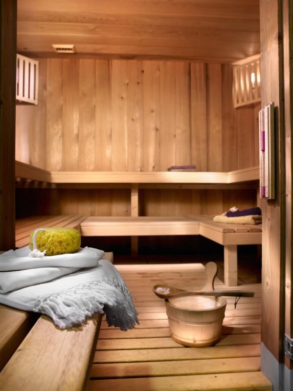 Champagny En Vanoise Location Appartement Luxe Chapmanite Sauna