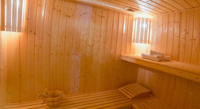Chatel Location Chalet Luxe Chalcocyanite Sauna 2