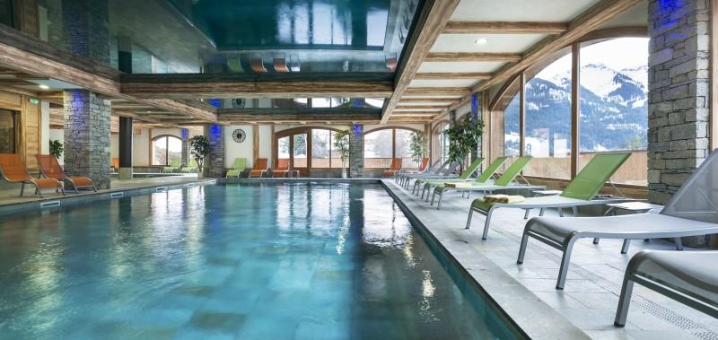Châtel Rental Apartment Luxury Fabianite Swimming Pool