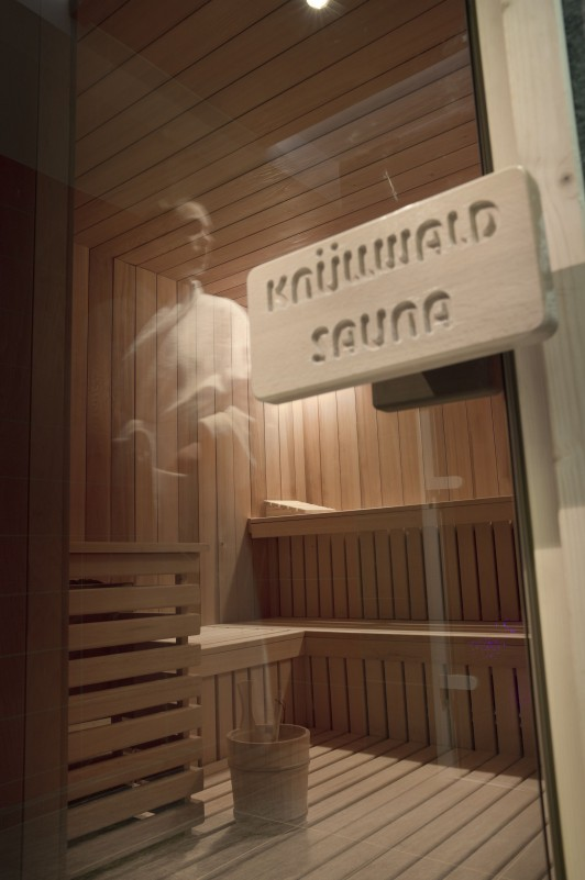 Flaine Location Appartement Luxe Fangisse Sauna