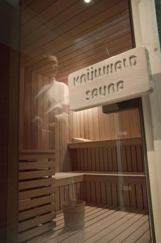 Flaine Location Appartement Luxe Fassaite Sauna