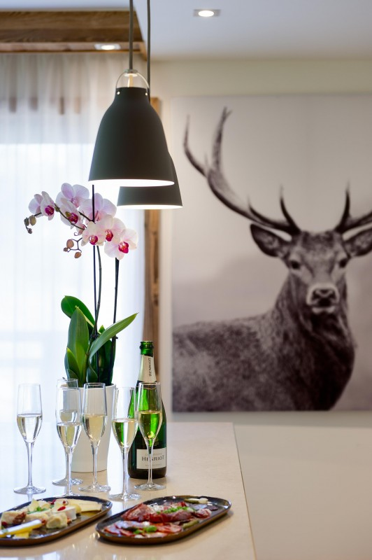 Les Gets Location Appartement Luxe Andime Cuisine