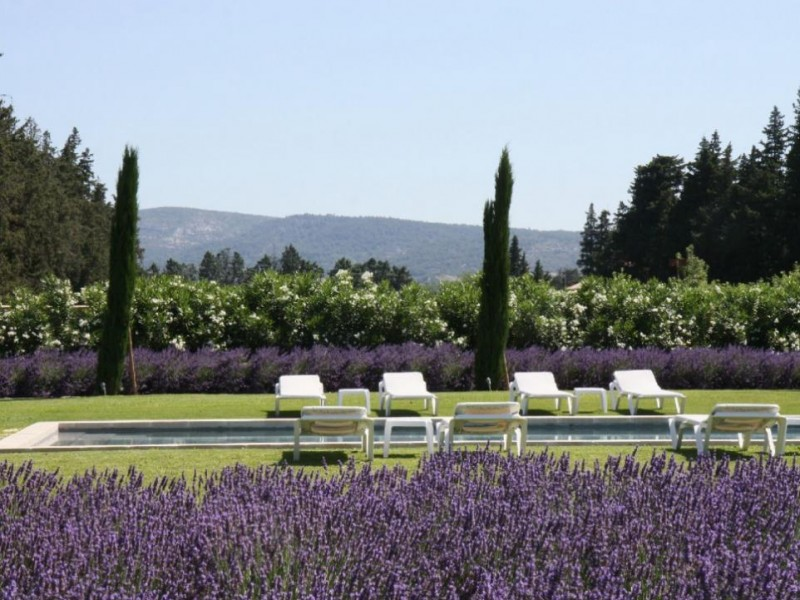 Luberon Location Villa Luxe Limette Piscine 3