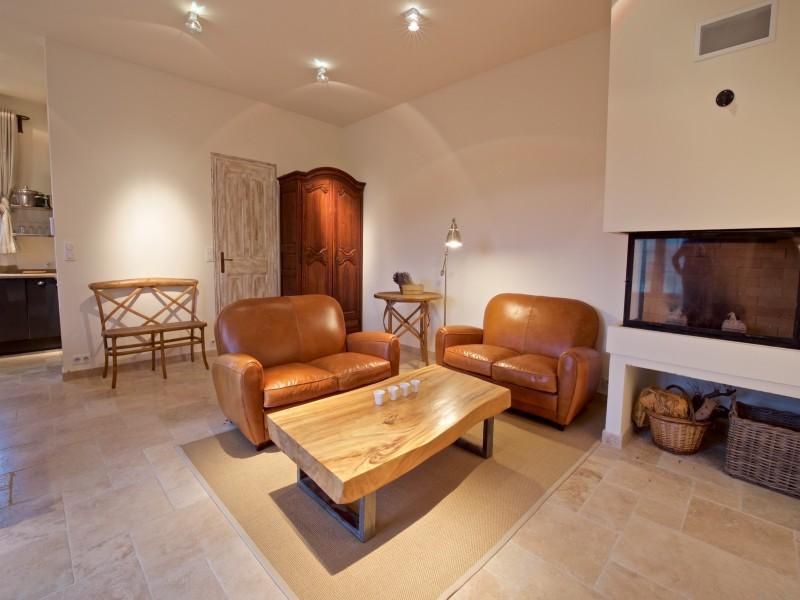 Saint Rémy De Provence Location Villa Luxe Molduvite Séjour 4